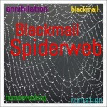 Blackmail Spiderweb mp3 by Miss Kay